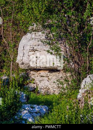 Mushroom-shaped stone small building Krsan in Istria in Croatia - Stock Image