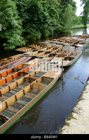 Punts on the River Cherwell, Oxford, Oxfordshire, UK - Stock Image