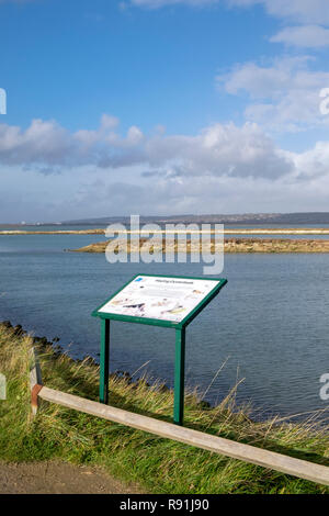 Hayling Island Oyster Beds - Stock Image