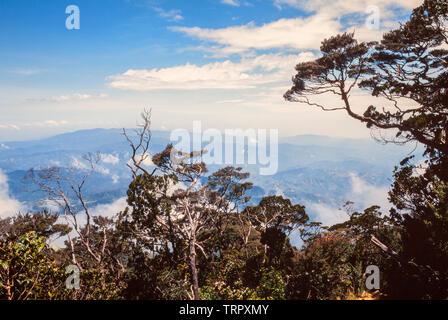 Mount Kinabalu National Park, Sabah, East Malaysia. Summit trail, view at 3200 metres - Stock Image