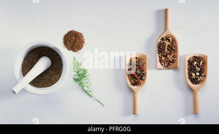 Caraway and Mixed Spices - Stock Image