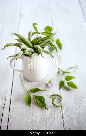 Group of green beans on white table - Stock Image