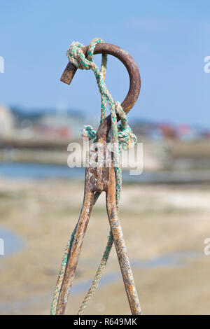 Oyster hook - Stock Image