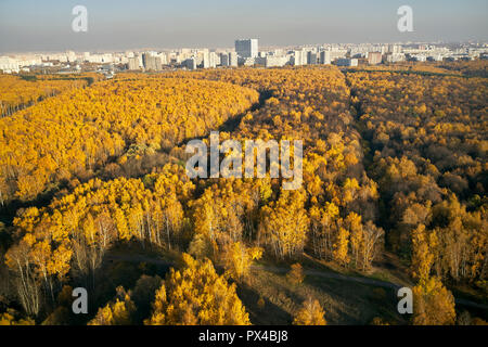 Aerial view of Bitsevski Park (Bitsa Park) with trees in golden autumn colors. Moscow, Russia. - Stock Image