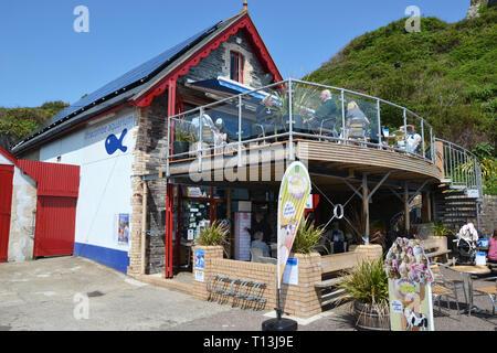 Ilfracombe Aquarium, The Old Lifeboat House, The Pier, Ilfracombe Harbour, Ilfracombe, Devon, UK - Stock Image