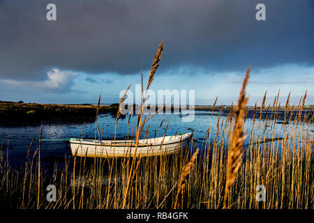 Ardara, County Donegal, Ireland. 7th January 2019. An inshore fishing boat is seen through reedbeds on a day of sunshine and showers on the north-west coast. Credit: Richard Wayman/Alamy Live News - Stock Image