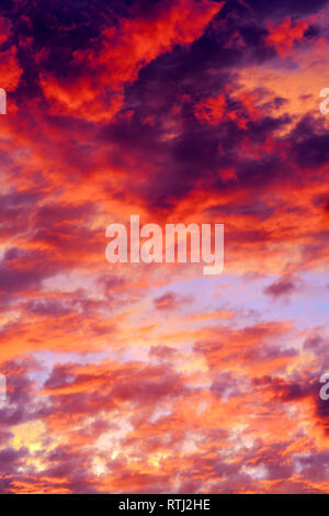 Clouds on sunset sky, background - Stock Image
