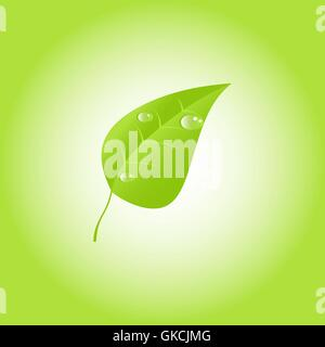 Green leaf with drops of dew. Vector. EPS 10 - Stock Image