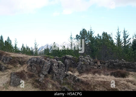 Arid terrain and mountains in distance - Stock Image