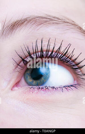 close up of a young woman eye - image for book cover - Stock Image