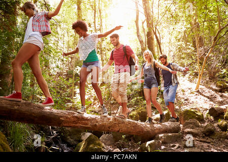 hiking,excursion,friends,balance - Stock Image