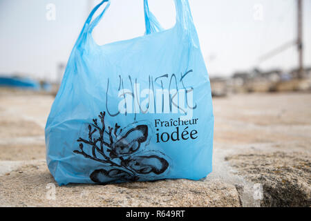 Bag of fresh Brittany oysters - Stock Image