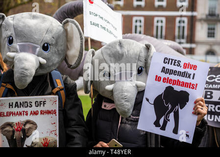 Protesters at a stop trophy hunting and ivory trade protest rally, London, UK. CITES give Appendix I to elephants. Elephant costume - Stock Image