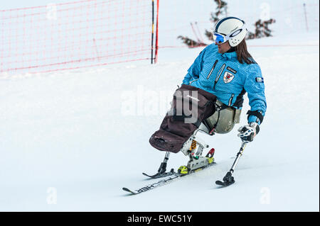 A disabled skier using specially-adapted ski equipment - Stock Image