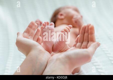Baby feet in mother hands - Stock Image