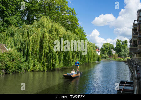 Couple being punted along river Cam Cambridge 2019 - Stock Image
