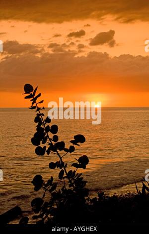Jamaica Treasure beach sunset - Stock Image