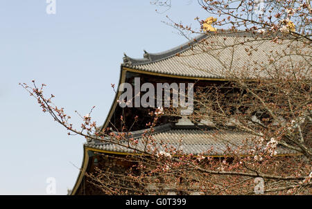 Todaiji Temple roof detail. Todaiji is in Nara, Japan and houses a big budha statue. - Stock Image