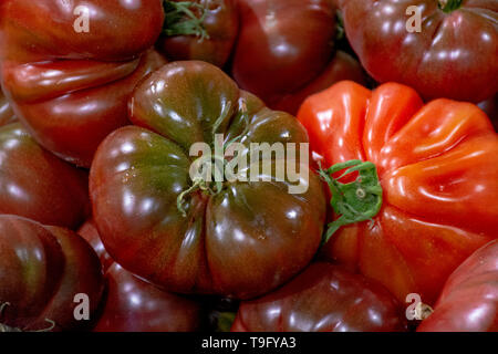 Big ripe french tomatoes, food background close up - Stock Image