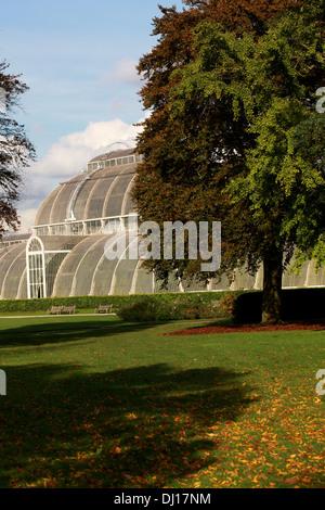 Palm House, Kew Royal Botanical Gardens. - Stock Image