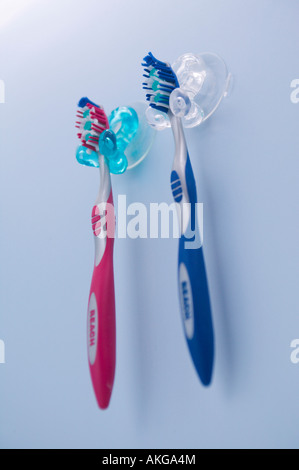 Pair of toothbrushes - Stock Image