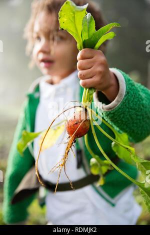 Girl holding turnip in hand - Stock Image