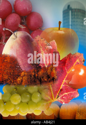Agriculture poster - Stock Image
