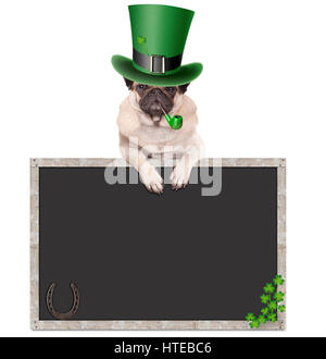 lovely cute pug puppy dog with leprechaun hat for st. patrick's day smoking pipe, leaning on blank chalkboard - Stock Image
