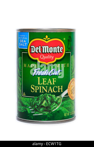 Del Monte Foods Canned Fresh Cut Leaf Spinach - Stock Image