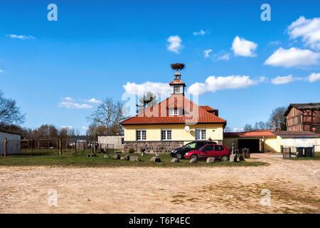 Stork nest on clock turret of house in Milmersdorf, Brandenburg, Germany - Stock Image
