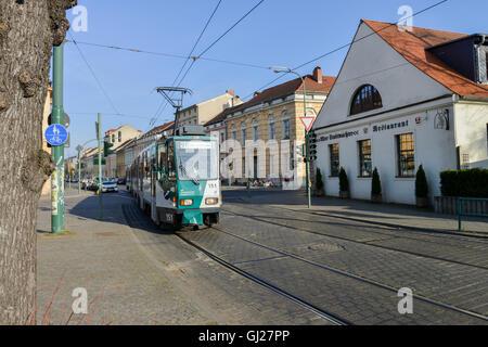 Tatra Tramcar No.151 on Charlottenstraße, Potsdam, Germany -1 - Stock Image
