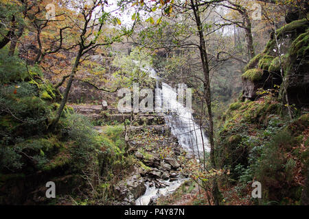 Pistyll Cain · Rhaeadr Mawddach waterfall in Snowdonia National Park North Wales UK - Stock Image