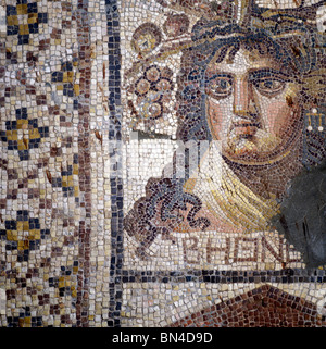 Roman mosaic National Museum Aleppo Syria - Stock Image