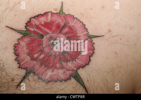 Sweet William flower tattoo on man's chest - Stock Image