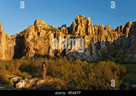 Natural Monument of El Cerro del Hierro. Sierra Norte Natural Park. Seville province. Region of Andalusia. Spain. Europe - Stock Image
