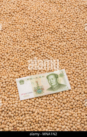 China US soy bean tariffs concept - Chinese Renminbi banknote with masses of raw / dry soya beans. US China trade war concept, China soybean tariffs. - Stock Image