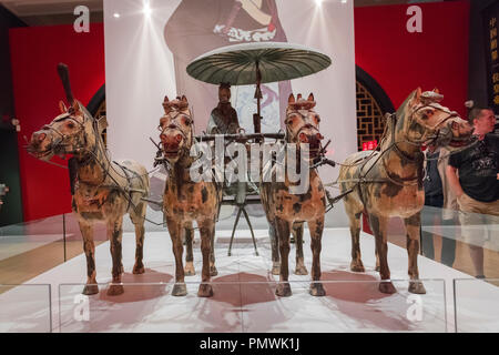 Liverpool William Brown Street World Museum China's First Emperor & The Terracotta Warriors Exhibition chariot four horses - Stock Image