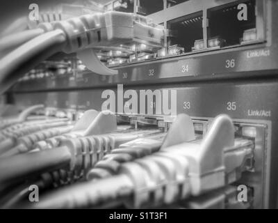 Network switch - Stock Image