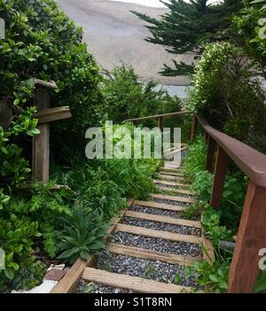 Stairs to the beach - Stock Image