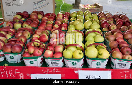 Baskets of local apples for sale at a roadside farm stand in the Niagara Peninsula, Ontario, Canada. - Stock Image