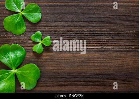 Three Shamrocks on Dark Wood Aligned Left with Space for Copy - Stock Image