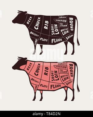 Cut of meat, beef. Poster butcher diagram and scheme, vector illustration - Stock Image