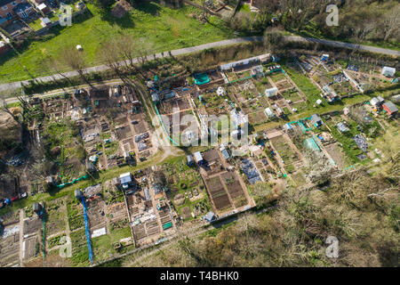 An aerial drone birds eye view of a local authority allotment , for  people who do not have gardens of their own, for growing fruit and vegetables for personal consumption. Aberystwyth Wales UK [CAA licenced drone operator] - Stock Image