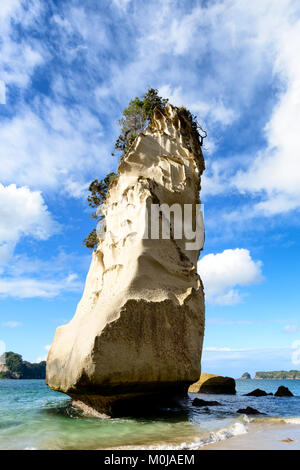 Rock formation, Cathedral Cove, Ha Hei, New Zealand - Stock Image