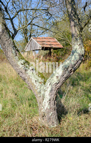 old overgrown abandoned water well in a field rural countryside zala county hungary - Stock Image