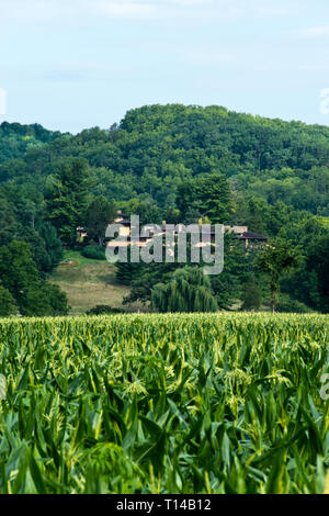 A view from a corn field of Taliesin, the estate of American architect Frank Lloyd Wright, near Spring Green, Wisconsin. - Stock Image