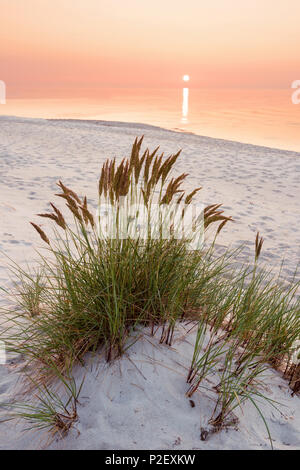 Summer, Sun, Sunset, Beach, Baltic Sea, Mecklenburg, Germany, Europe - Stock Image