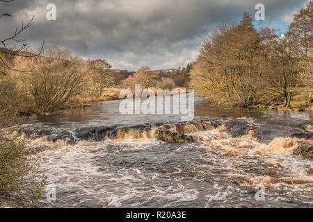 North Pennines AONB Landscape, cascade on the river Tees from the Pennine Way between Low and High Force Waterfalls in autumn sunshine and a dark sky - Stock Image