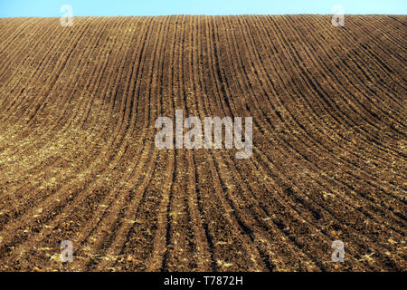 Agricultural land. Treated spacious field in the plane. Ploughing time. Spring. - Stock Image