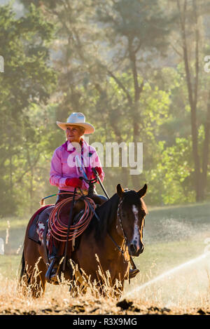 USA, California, Parkfield, V6 Ranch cowgirl in a pink shirt on her horse (MR) - Stock Image